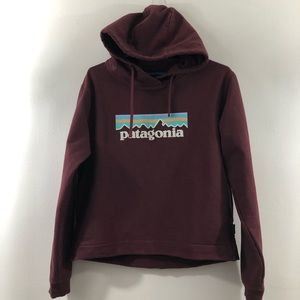 Patagonia Well Worn Sweatshirt/Hoodie Size S